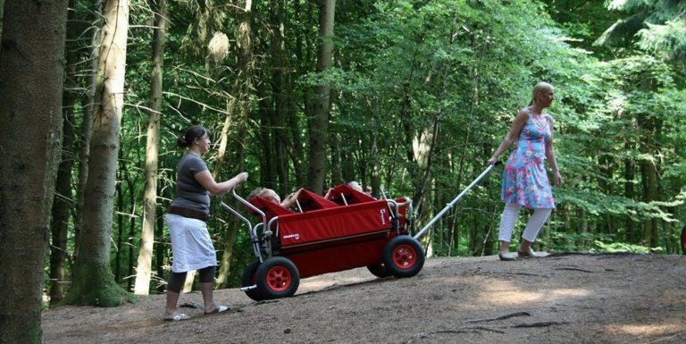 Rambler Bollerwagen - Krippenwagen für KiTas & Tagesmütter 4