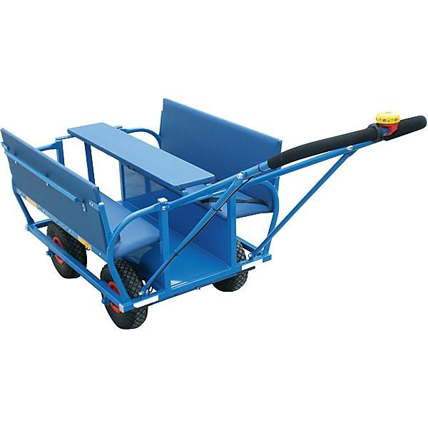 Insgraf Krippenwagen 6 Sitzer (Krippenausflugswagen) 1