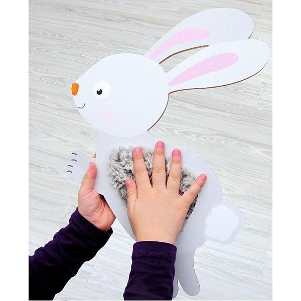 Sensorische Applikation - Kaninchen 3