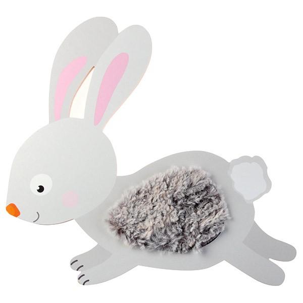 Sensorische Applikation - Kaninchen 1