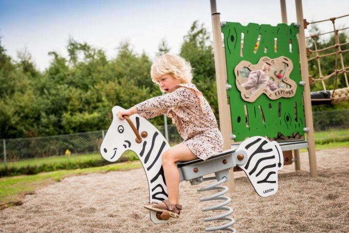 Federwippe Zebra - LEDON Explore - EX013 4
