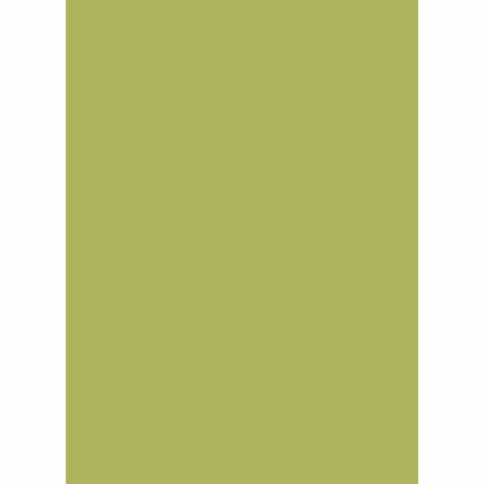 Holzfarben-Auswahl 8