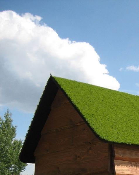Lars Laj Veranda Haus Natur mit Grasdach 2